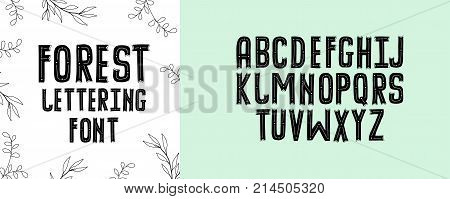 Modern Fancy Forest Alphabet Handwritten Font Letters Hand Lettering For Your Design