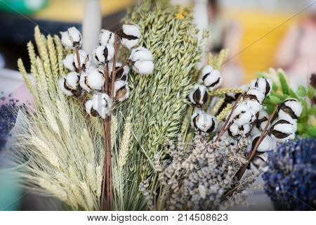 Close-up of creative bouquets of dried flowers with dried Gossypium branch or cotton stem with fluffy white cotton balls. Unusual flower arrangements flower shop studio. Delivery of flowers smell plants aroma