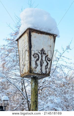 Winter Forest Grove Old Streetlight Lamp Cold Season Nature Snow