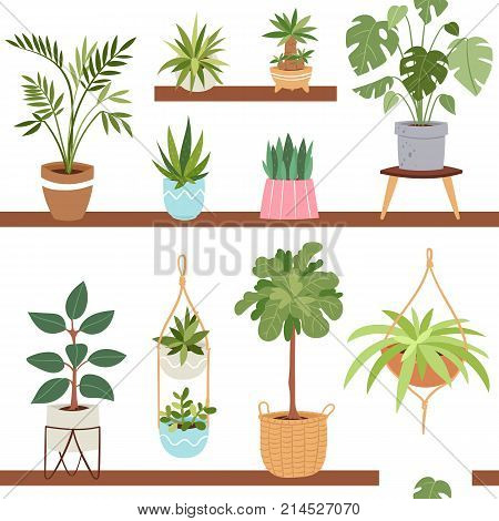 House indoor vector plants and nature homemade flowers in pot interior decoration houseplant natural tree flowerpot illustration. Natural green gardening blossom foliage seamless pattern background