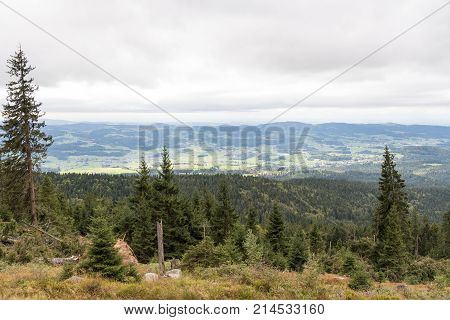 View on the hiking destination Dreisesselberg in the Bavarian Forest National Park