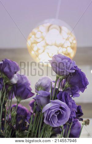 Beautiful fresh purple roses bouquet in vase stock photo