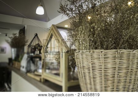 Dried little white flowers in basket stock photo