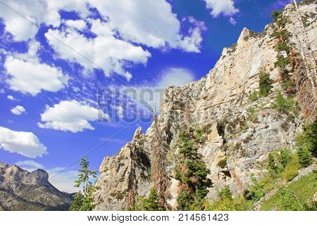The Echo Cliffs showcase a sheer vertical drop at Spring Mountains National Recreation Area of Nevada
