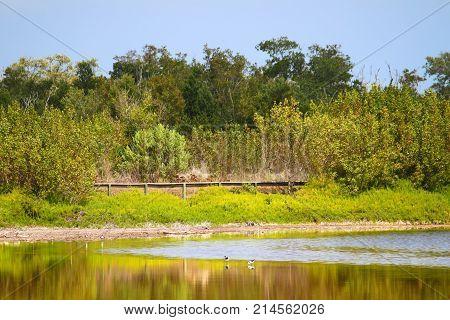 Nature trail boardwalk around Eco Pond at Everglades National Park in Florida