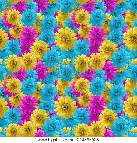 Marigold calendula officinalis. Texture of flowers. Seamless pattern for continuous replicate. Floral background photo collage for production of textile cotton fabric. For use in wallpaper covers