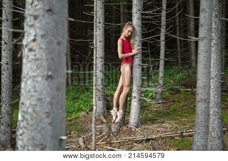Amazing ballerina stands on pointes near the dry tree on the background of the coniferous forest. She wears a red leotard and light ballet shoes. Girl looks into the camera. Horizontal.
