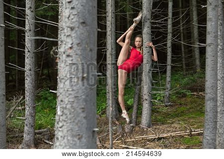 Dancer with closed eyes stands on the left toe and holds hand on the dry tree on the background of the coniferous forest. She wears a red leotard and ballet shoes. Her right leg outstretched upward.