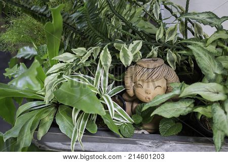 Green view indoor home garden stock photo