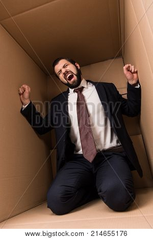 Businessman Screaming In Box