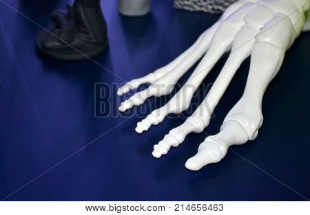 White prototype of the human foot skeleton printed on 3d printer on dark surface. Fused deposition modeling, FDM. Progressive modern additive technology. Concept of 4.0 industrial revolution
