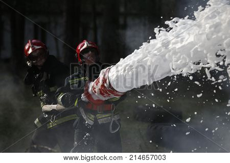 Belarus Gomel 04/06/2017 extinguishing forest fire.Belarus Gomel 04/06/2017 .Extinguishing the fire. Firemen are working. Fill the foam with a fire. Resolute firefighters. Fight fire.