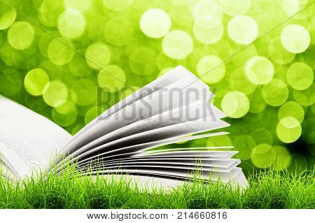 Open book in green grass over yellow bokeh sunlight. Magic book