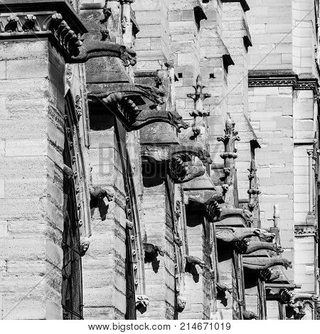 Architectural details of the catholic cathedral Notre-Dame de Paris. Built in French Gothic architecture Notre-Dame's facade showing a collection of gargoyles and chimera. Paris France