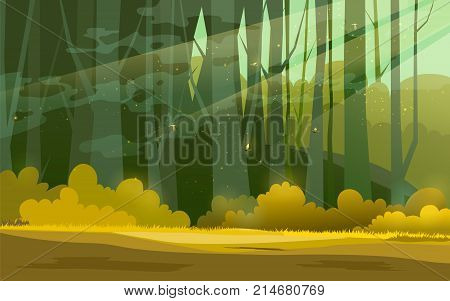 Sunny forest background, vector illustration of woods in forest in sunlight background.
