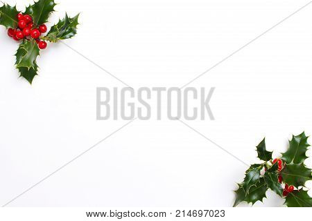 Christmas holly floral decoration on white background. Evergreen leaves with red berries and empty space for holiday text, styled stock photo, top view.