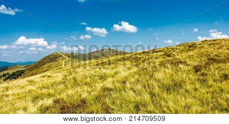 Panorama Of Grassy Mountain Ridge