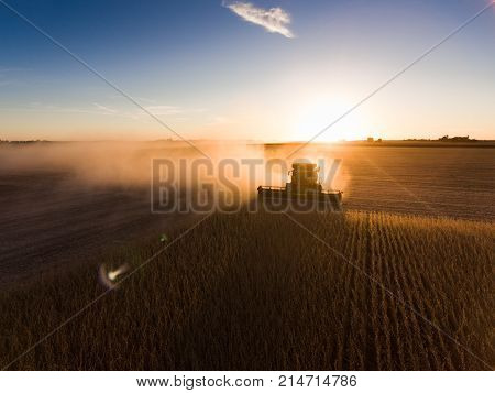 Silhouette Of Harvest