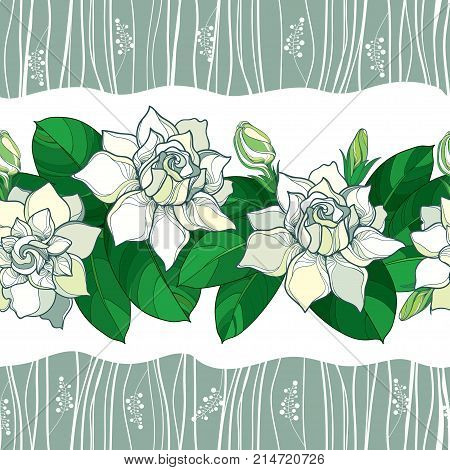 Vector seamless pattern with outline Gardenia flower in pastel color. Ornate bud and green leaves on the white background. Floral pattern with Gardenia in contour style for summer design.