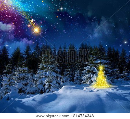 Winter landscape with snow covered fir trees and stars. Christmas background.Christmas star and abstract sky.