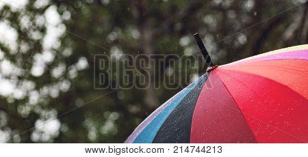 Panorama Of Close-up  Umbrella In Rainbow Colors In Rainy Autumn Day, Blur Focus