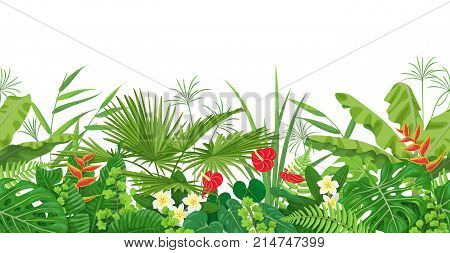 Horizontal floral seamless border made with colorful leaves and flowers of tropical plants on wtite background. Tropic rainforest foliage pattern. Vector flat illustration.