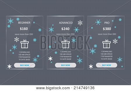 Price list, hosting plans and web boxes banners design. three tariffs. interface for the site. Christmas banner for web app.