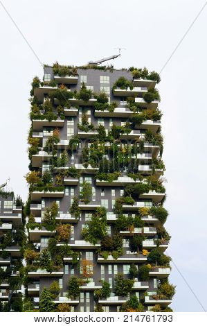 Milan, Italy, Skyscraper Vertical Forest View.