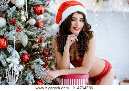 Beautiful brunette sexy Santa Clause in elegant panties, hat and bra. Fashion portrait of model girl indoors with Christmas tree. Cute woman in lace red lingerie.