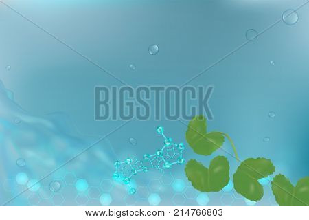 Centella asiatica on blue background with space for text. illustration vector.