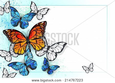 White background is painted blue and green with bright butterflies and monarchs and morpho . Morpho. Monarch butterfly. Design with butterflies.