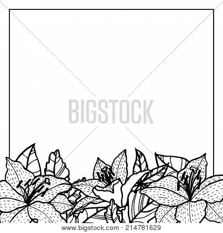 vintage vector floral frame in victorian style, flowers, buds and leaves of lilies, ink drawing, imitation of engraving, hand drawn design template