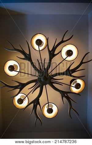 Light Bulb And Lamp In Modern Style. Warm Tone Light Bulb Lamp.lamps In Restaurant.