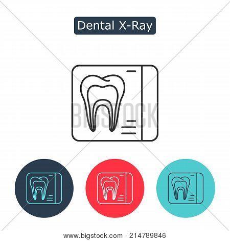 Dental X Ray Vector Vector Photo Free Trial Bigstock