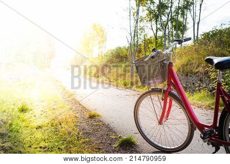 Red retro bike with basket on a cycle path with sunlight