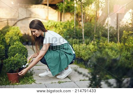 Young and chic female gardener taking care of plants in backyard. Earning money to pursue her travel dream. Young employee concept.