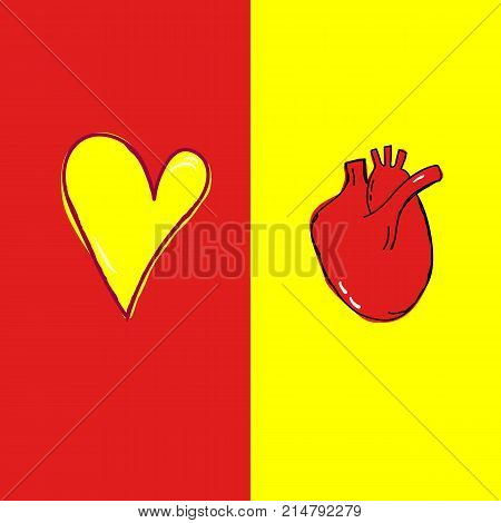 Freehand Doodle Vector Illustration Anatomical Realistic Human Heart Romantic Symbol Colorful Red Yellow Background. Cardiology Transplantation Healthcare Poster Banner. Copy Space