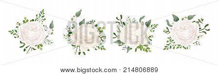 Vector floral bouquet design: white garden Ranunculus Rose flower fern eucalyptus mistletoe branch greenery leaves berry. Wedding vector invite card Watercolor watercolor cute designer element set