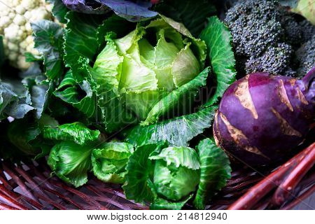 Various Of Cabbage Broccoli Cauliflower. Assorted Of Cabbages In Basket.