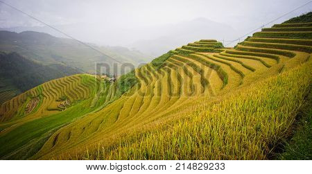 Mountain Scenery In Northern Vietnam