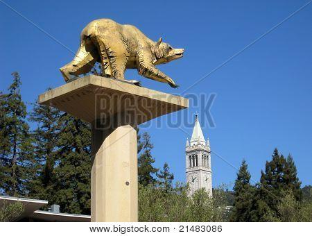 University Campus UC Berkeley, California