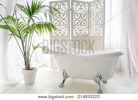 Beautiful luxury vintage empty bathtub near big window in bathroom interio free space. Freestanding white bath near folding screen and palm tree copy space