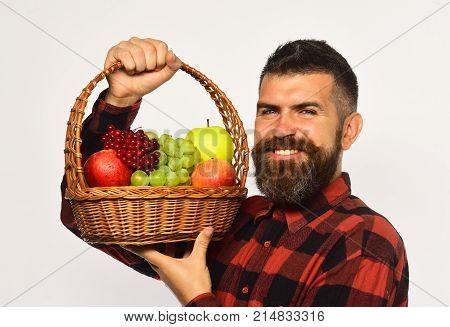 Guy Holds Homegrown Harvest. Man With Beard Holds Fruit Basket