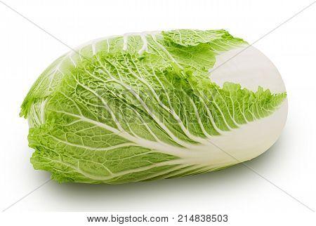 Green Peking Cabbage