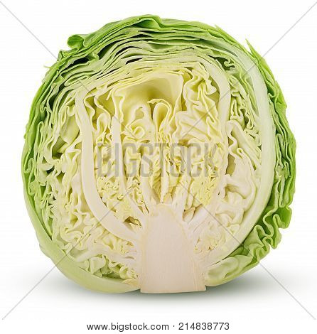 Green Cabbage Cut In Half
