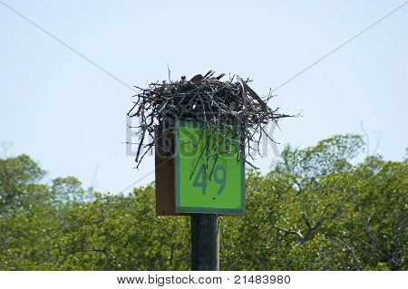 Channel Mile Marker With Osprey Nest