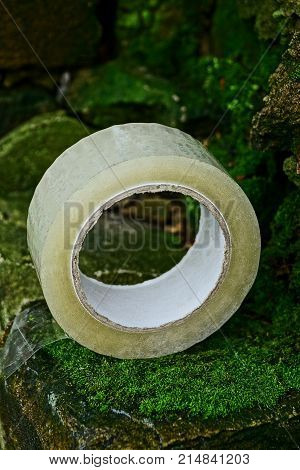 a hank of transparent scotch lies on old stones covered with moss