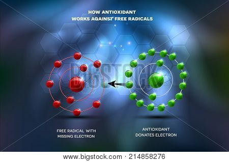 Antioxidant Works Against Free Radical