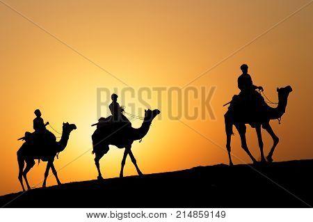 Jaisalmer, India, November 2, 2017 : Caravan Of Camels At Sunset In The Sand Desert. Several Safaris