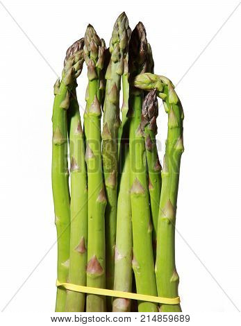 Bundle of  Green asparagus shoots Isolated white background png file
